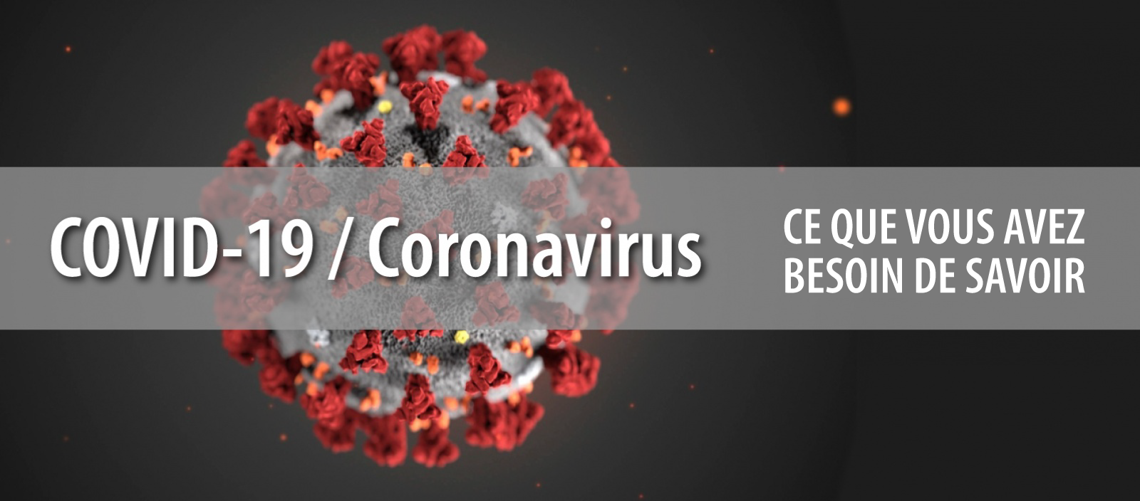 COVID-19, Information on the coronavirus